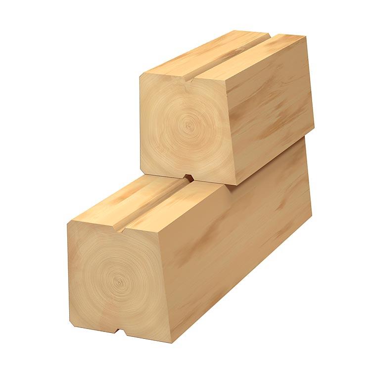 Log_Plank